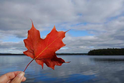加拿大买房贷款利率?